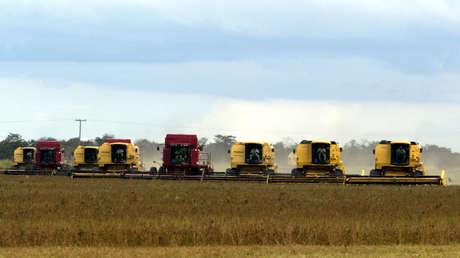 Cosechadoras recolectan semillas de soja en Sorriso (Mato Grosso, Brasil), el 19 de marzo de 2004.