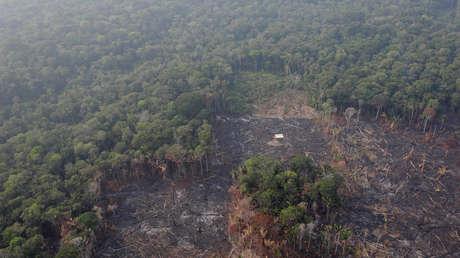 Vista área de la deforestación de la Amazonia. Humaita, estado de Amazonas, Brasil. 22 de agosto de 2019.