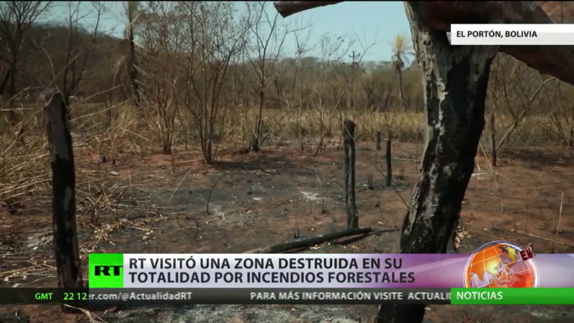 RT visita una zona destruida en su totalidad por los incendios forestales en la Amazonía