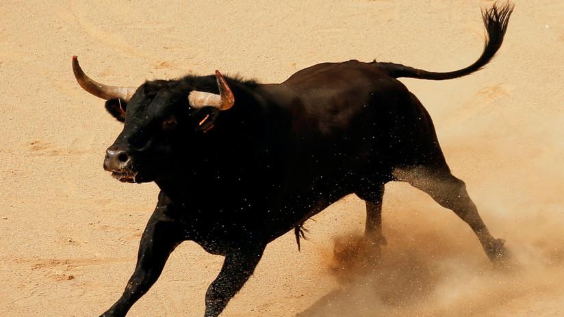 VIDEO: Al menos 17 heridos, uno de gravedad y otro crítico, por un toro que saltó a la tribuna en una fiesta en España