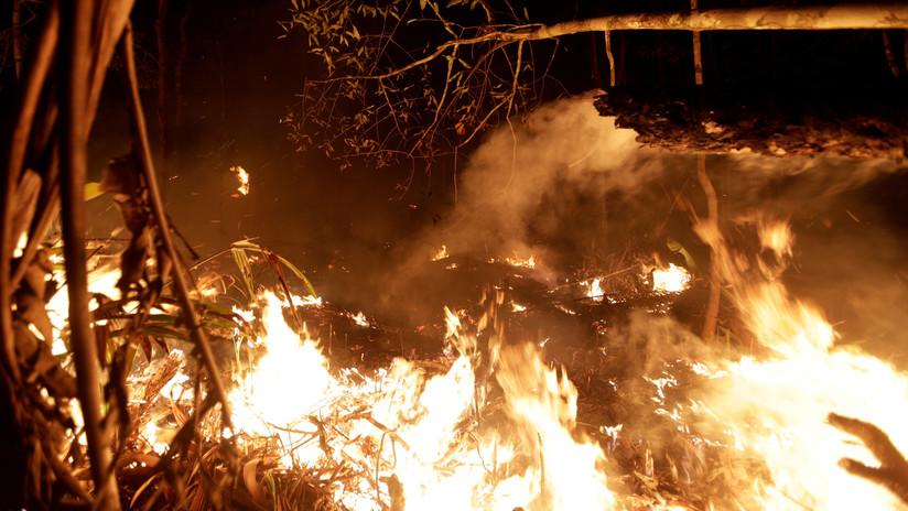 """""""Un verdadero apocalipsis"""": Un arzobispo brasileño culpa al Gobierno de los incendios en la Amazonía"""