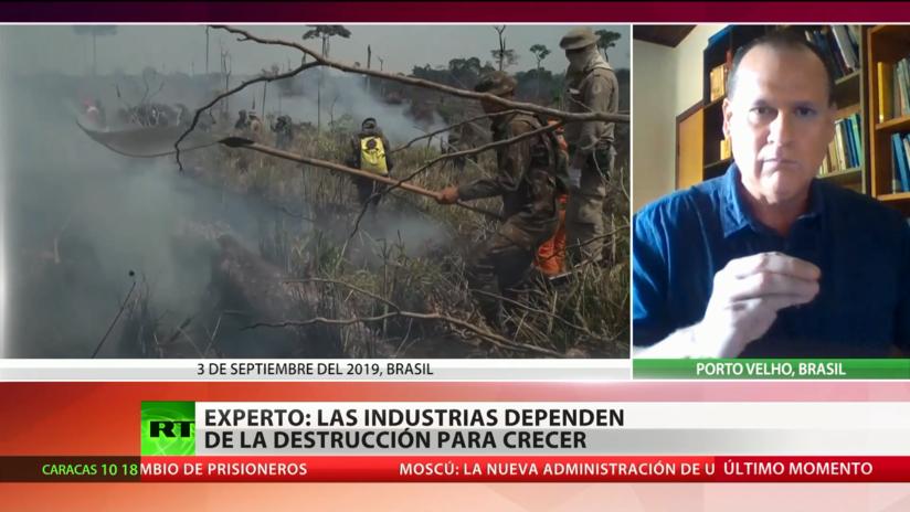 """Experto: Las industrias """"dependen de la destrucción"""" para crecer"""