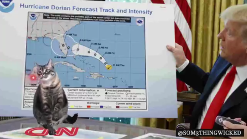 VIDEO: Trump tuitea un video en el que 'juega' con un gato señalando con un puntero láser sobre un mapa con la devastación del huracán Dorian