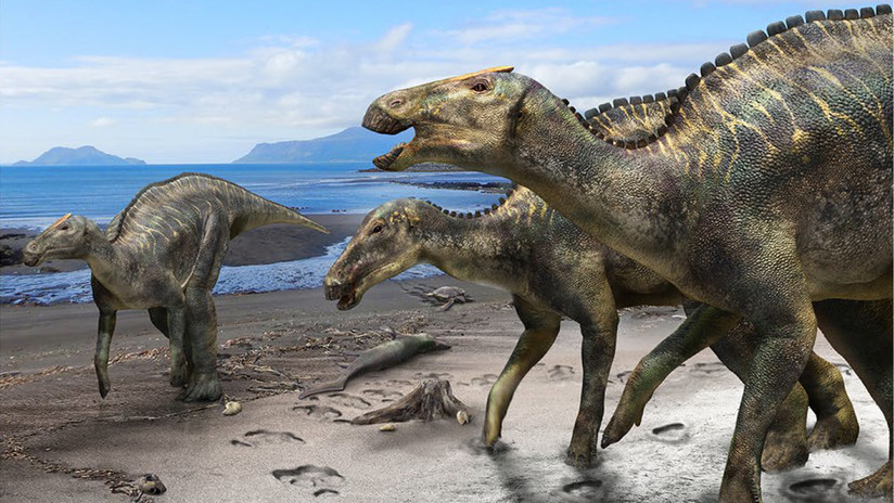 FOTO: Descubren una nueva especie de dinosaurios, la más grande que habitaba las islas de Japón