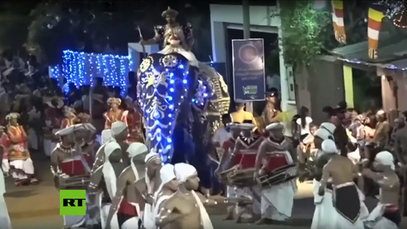 VIDEO: Un elefante enfurecido embiste a una multitud durante un desfile en Sri Lanka