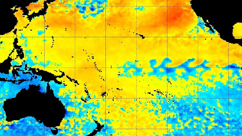 Una mancha de calor 'asesina' resurge en el Pacífico y mantiene en vilo a los científicos