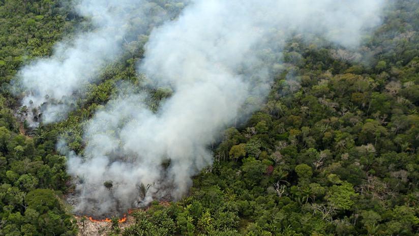 El mayor fondo para la protección de la Amazonia pende de un hilo