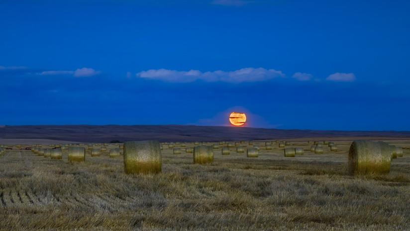 Una 'micro luna llena de cosecha' iluminará el cielo este viernes 13 por primera vez en casi 20 años