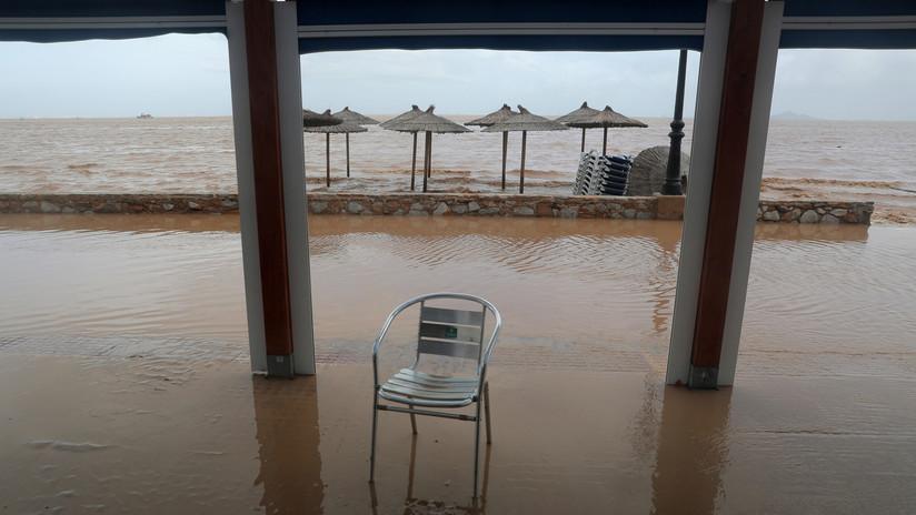 VIDEO: Transeúntes trocean un atún varado aparecido por el temporal en una playa en España