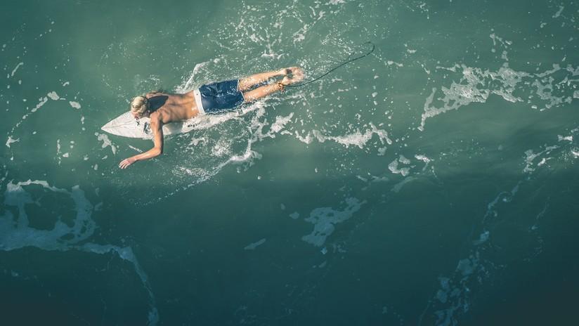 VIDEO: Surfista evita un encuentro con un tiburón gracias a la alerta de un dron