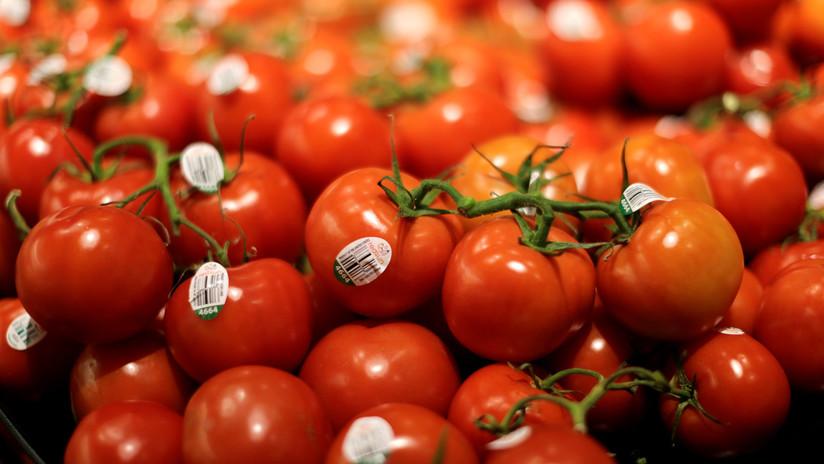 EE.UU. elimina oficialmente el arancel al tomate mexicano