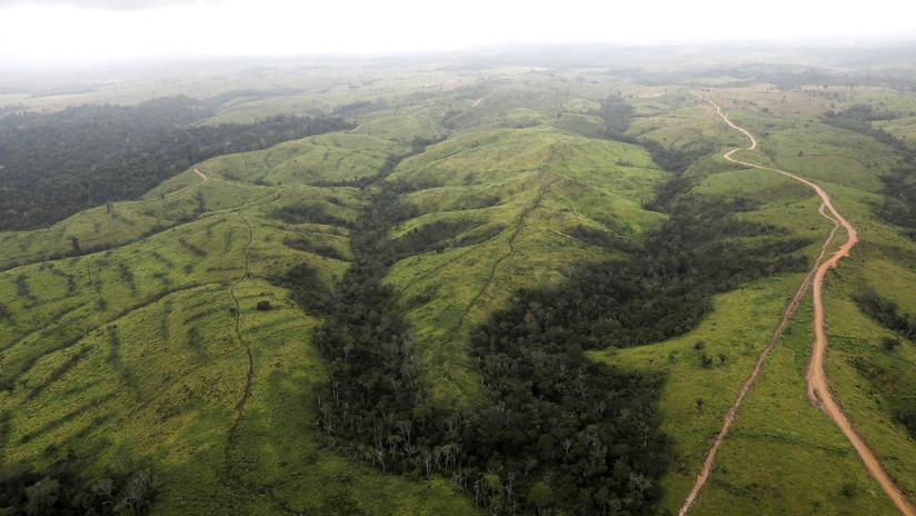 El complejo entramado de intereses en la Amazonia (y por qué es importante atenderlos)