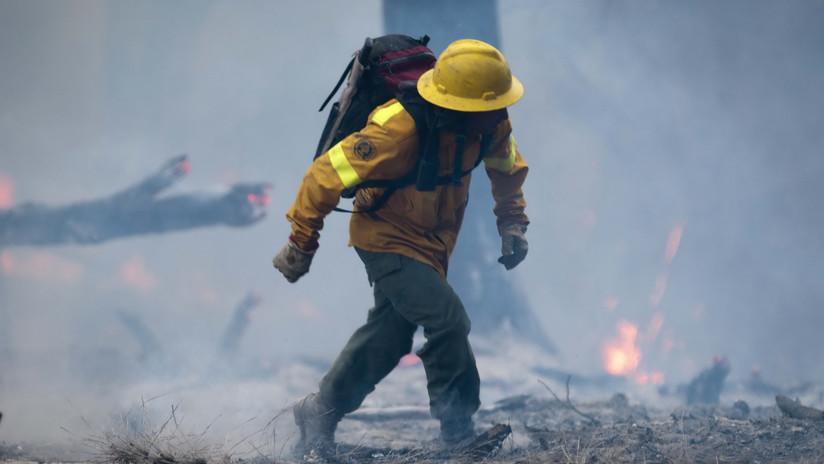 FOTOS, VIDEO: La lucha contra los incendios forestales en Argentina se dificulta por los fuertes vientos y las altas temperaturas