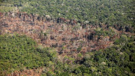 Porción deforestada de la Amazonia cerca de Porto Velho, en el estado de Rondonia (Brasil). 10 de septiembre de 2019.