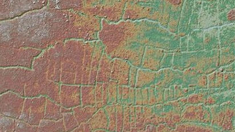 FOTO: Descubren una extensa red de campos y canales mayas que pudo cambiar el clima global hace 2.000 años