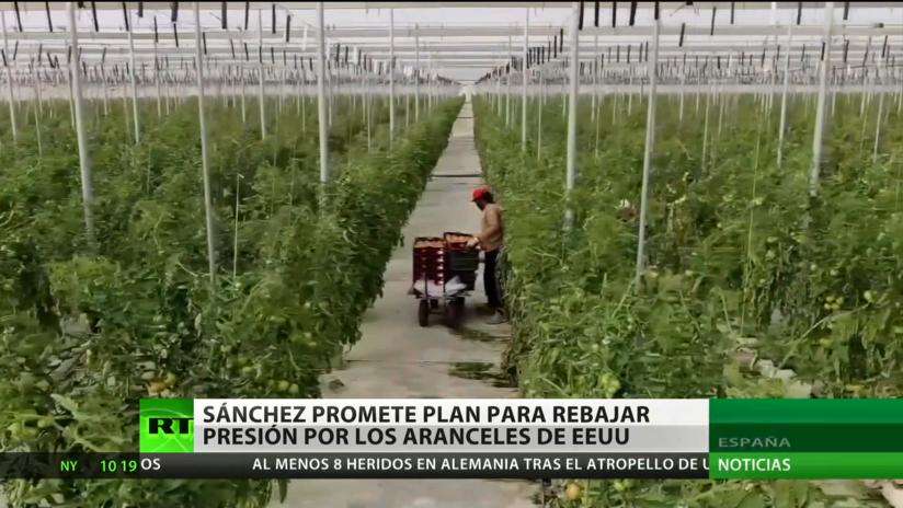 Pedro Sánchez propone una respuesta sectorial a los aranceles elevados de EE.UU.