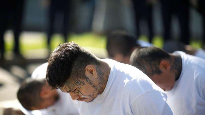 Juicio masivo: El Salvador procesa a 426 pandilleros de la MS-13