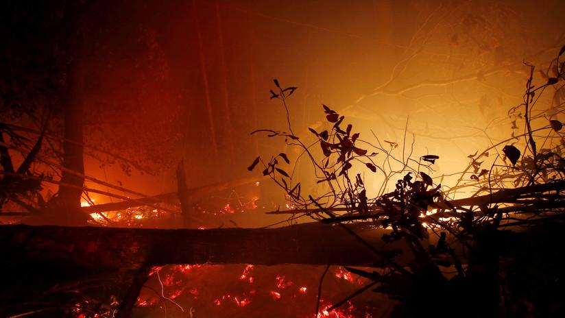 """Chile: Declaran alerta roja en Valparaíso por presunto """"incendio intencional"""""""