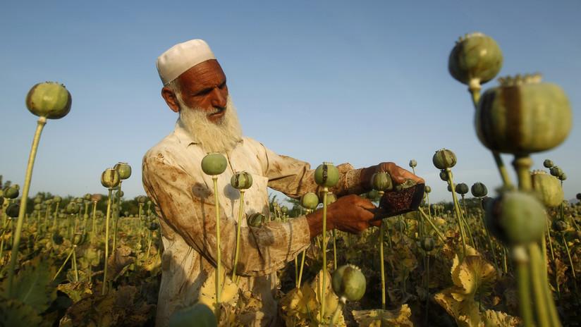 Ofensiva aérea de EE.UU. contra presuntos laboratorios de droga de los talibanes mata a 39 civiles, de ellos 14 niños