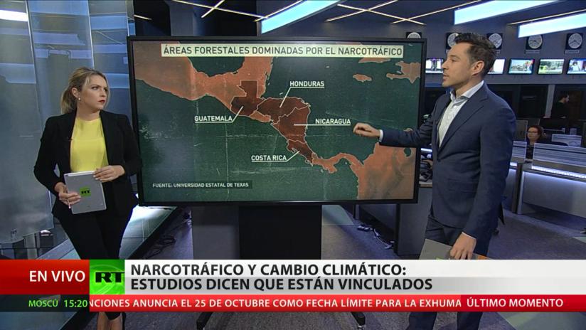 Científicos alertan que la narco-deforestación contribuye al cambio climático