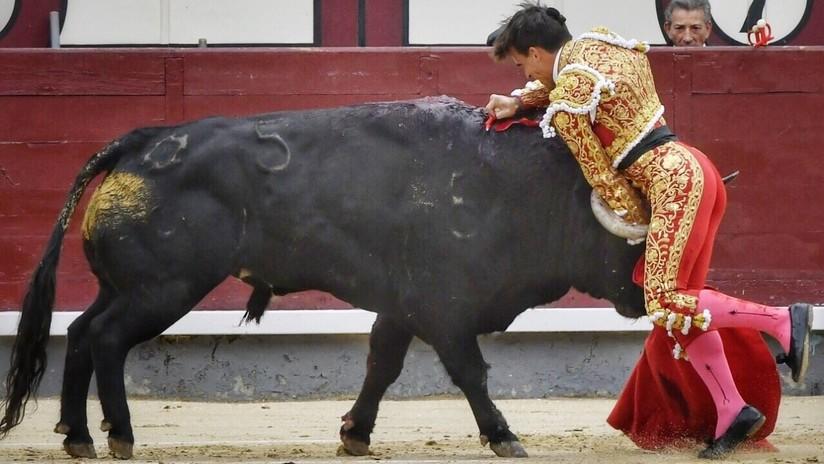 VIDEO: Grave cornada secciona la femoral de un conocido torero, novio de la sobrina del rey de España