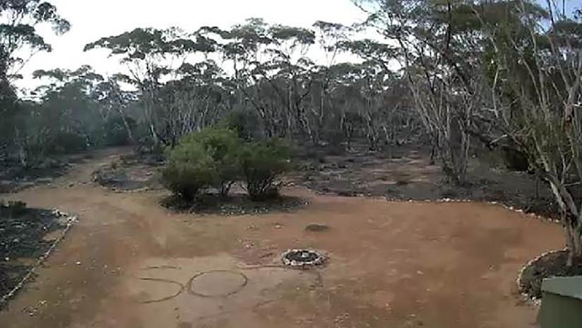 Pasa varios días perdida en una zona de matorrales en Australia y una cámara la salva de morir deshidratada