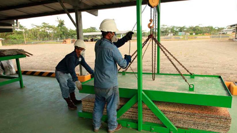 'Madera plástica': una iniciativa evita la tala de casi 1000 árboles al procesar 65 toneladas de desechos