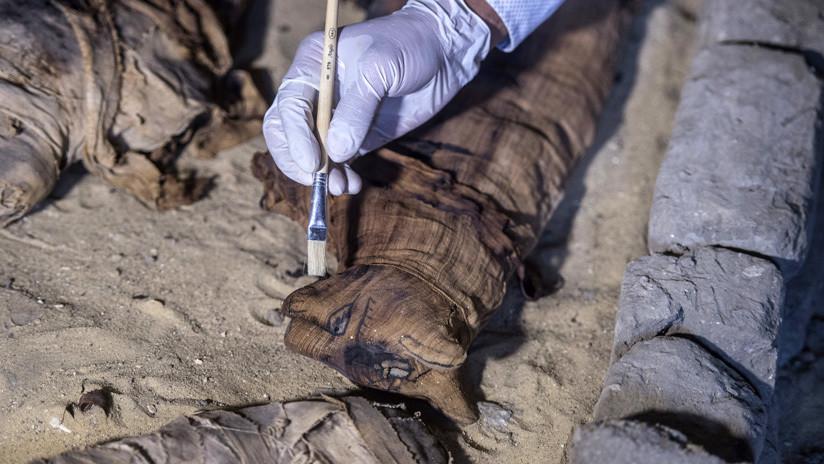 Científicos 'abren' una antigua momia de gato egipcia y se llevan una gran sorpresa al ver su contenido