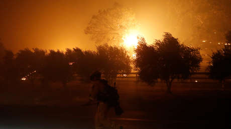Un bombero cerca de un árbol en llamas durante el incendio Kincade en Geyserville, California, EE.UU., 24 de octubre de 2019.