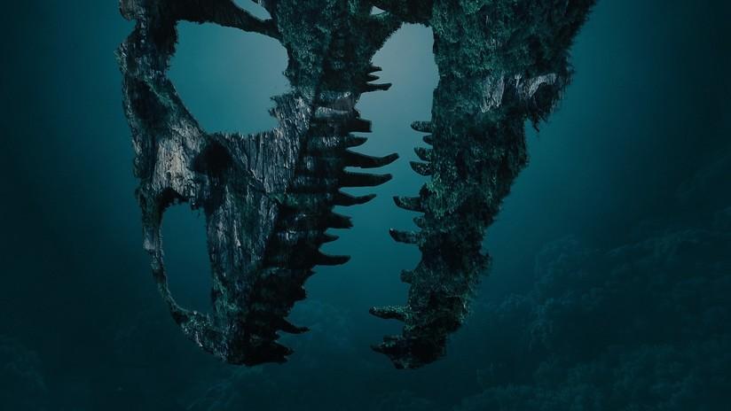 Hallan huesos de un enorme 'monstruo' marino de 150 millones de años en Polonia