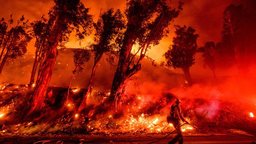 """Más de 11.000 científicos advierten sobre el """"incalculable sufrimiento"""" que podríamos enfrentar por el cambio climático"""