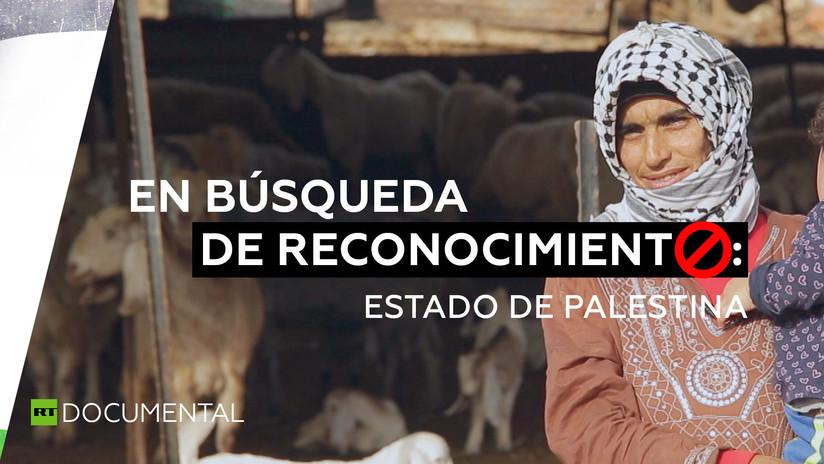 En búsqueda de reconocimiento: Estado de Palestina - RT en Español