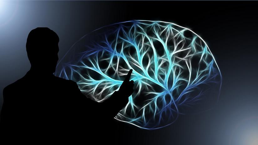 Una investigación revela cuánto hay que equivocarse para alcanzar un aprendizaje óptimo