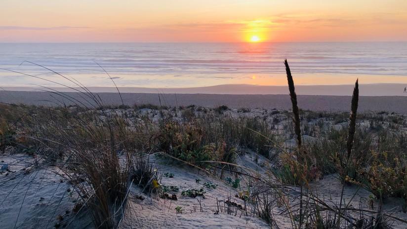 'Marea blanca': Cierran playas en Francia tras la llegada de más de mil kilos de cocaína arrastrada por las olas