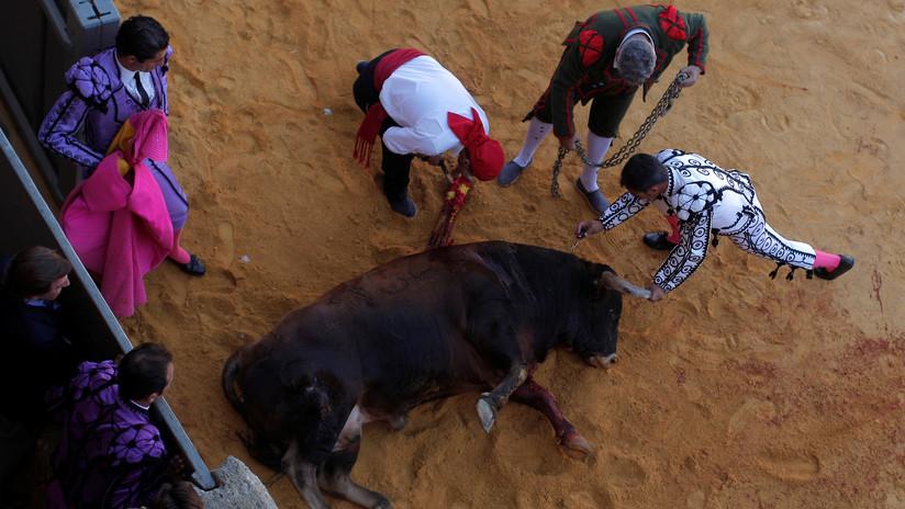 PETA publica un video donde se ve cómo apuñalan repetidamente a un toro en la cabeza