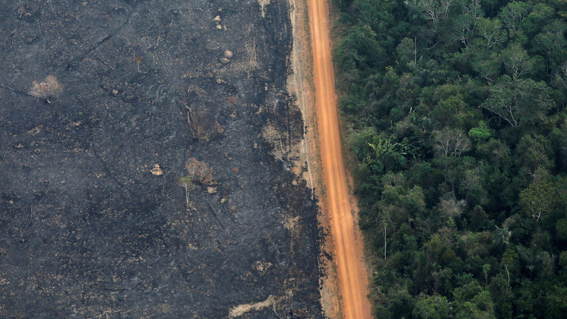 La deforestación en la Amazonía brasileña bate récord desde 2008