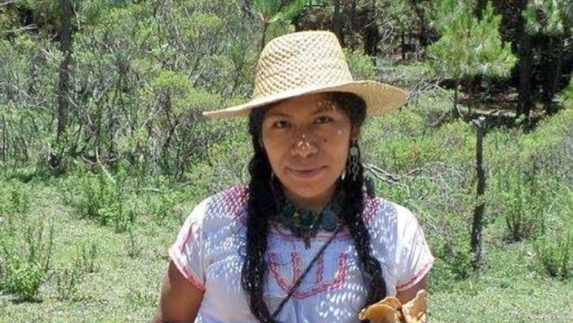 Desaparece la ambientalista Irma Galindo tras reportar amenazas en el estado mexicano de Oaxaca