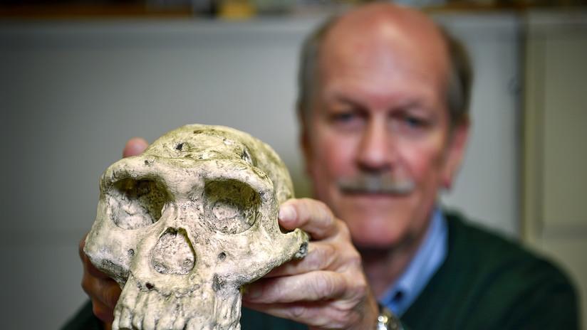 Crean una tecnología que determina el sexo y la especie de fósiles de más de un millón de años de antigüedad