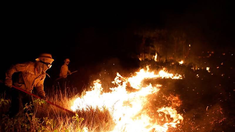 Los incendios en el Pantanal en Brasil ya han destruido una superficie que equivaldría a la ciudad de Río de Janeiro