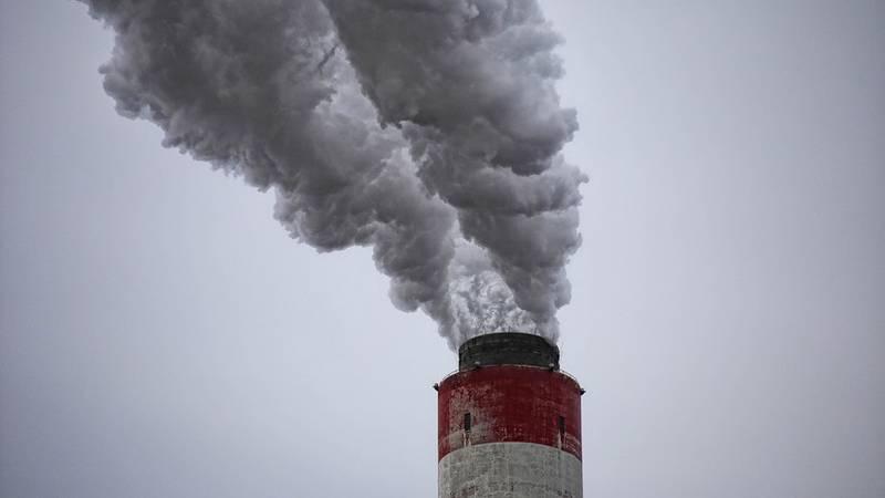 """""""Nos tienen miedo"""": La India acusa a Pakistán y China de liberar gases tóxicos para contaminar el aire de Nueva Delhi"""