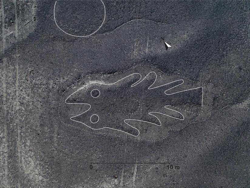 Descubren 143 nuevos geoglifos con ayuda de inteligencia artificial — Líneas de Nazca