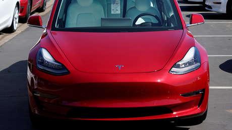 VIDEO: El piloto automático de un Tesla esquiva a una familia de patos que cruzaba la carretera