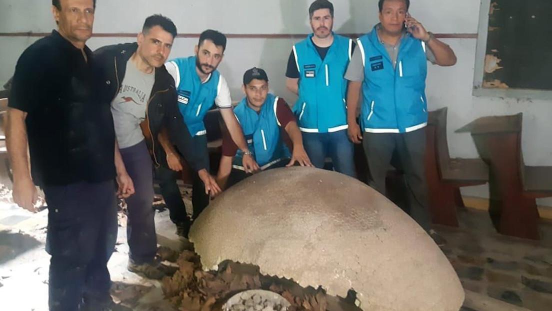 Recuperan en Argentina los fósiles de un megamamífero de más de 10.000 años de antigüedad