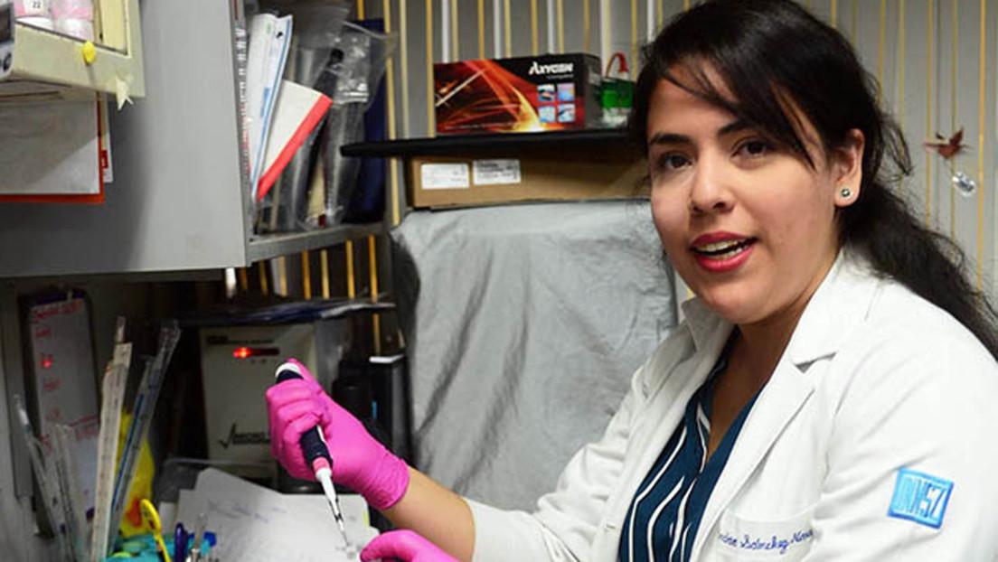 Mexicana crea un método para detectar de manera temprana el daño renal sin biopsia
