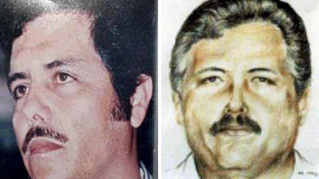 """Periodista mexicana revela secretos que podrían ocasionar una """"implosión"""" en el Cártel de Sinaloa, principal distribuidor global de cocaína"""