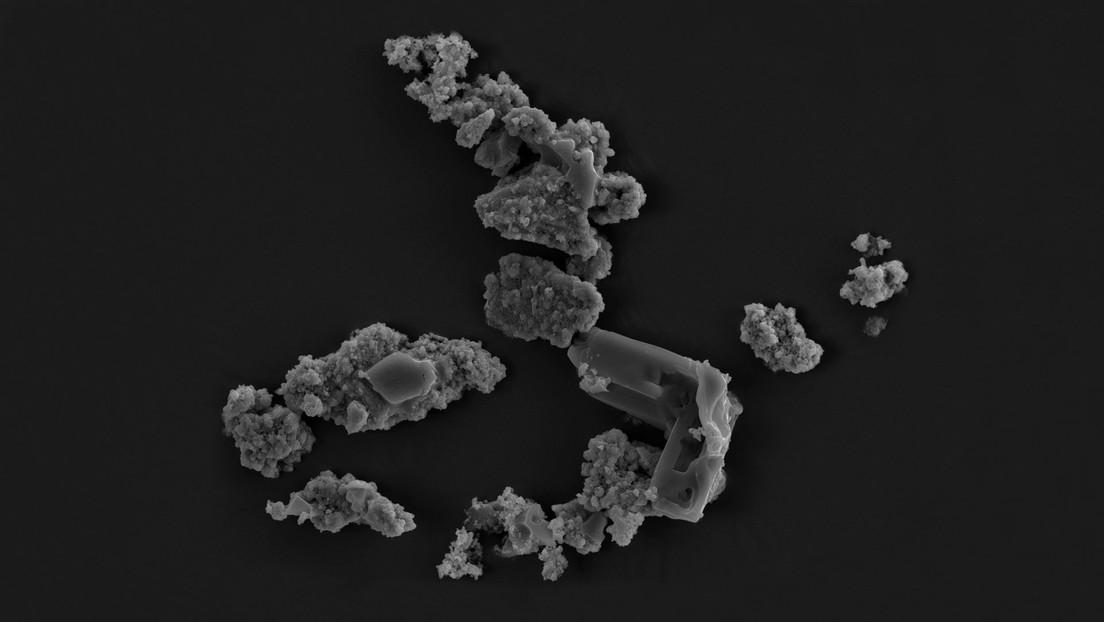 Descubren un microorganismo que se alimenta de meteoritos y luego 'baila' en su superficie