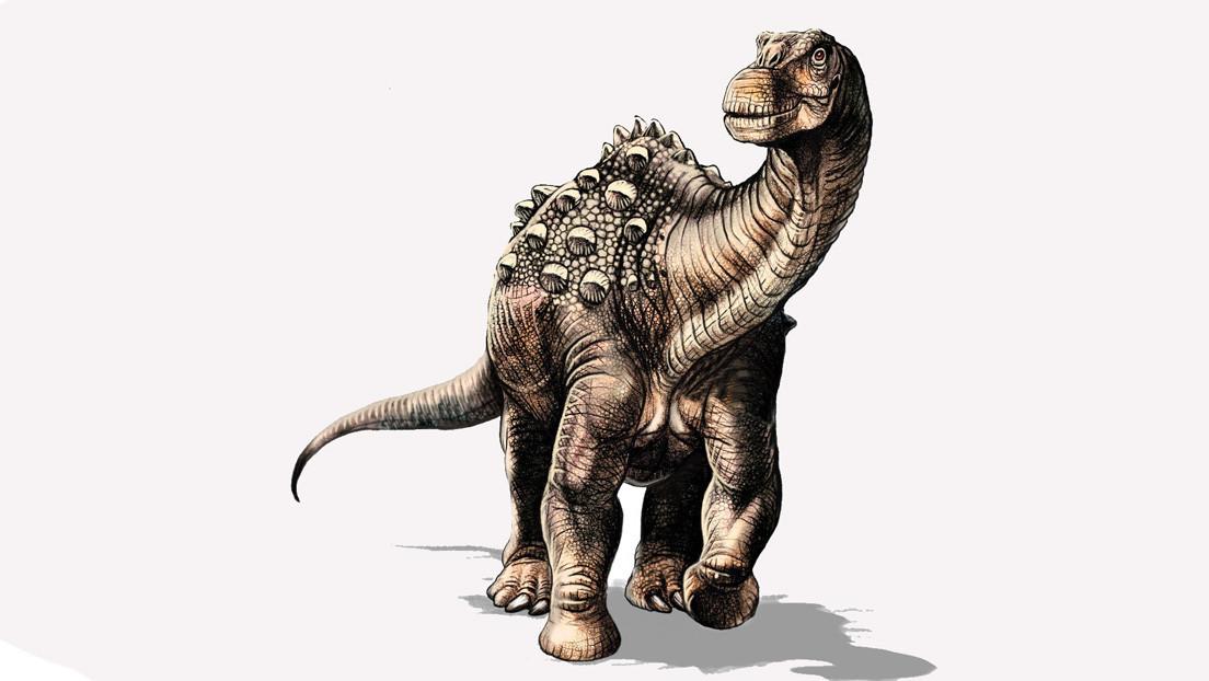 Paleontólogos encuentran al primer dinosaurio de Ecuador