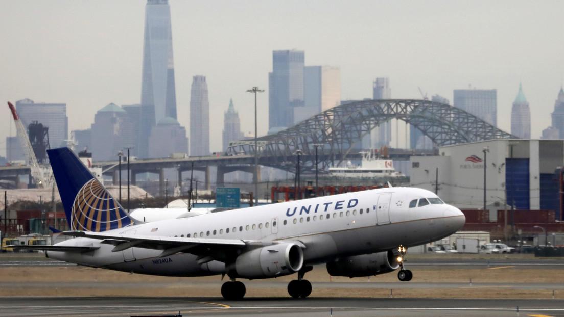 FOTO: Un escorpión pica a una pasajera en pleno vuelo de United Airlines en EE.UU.