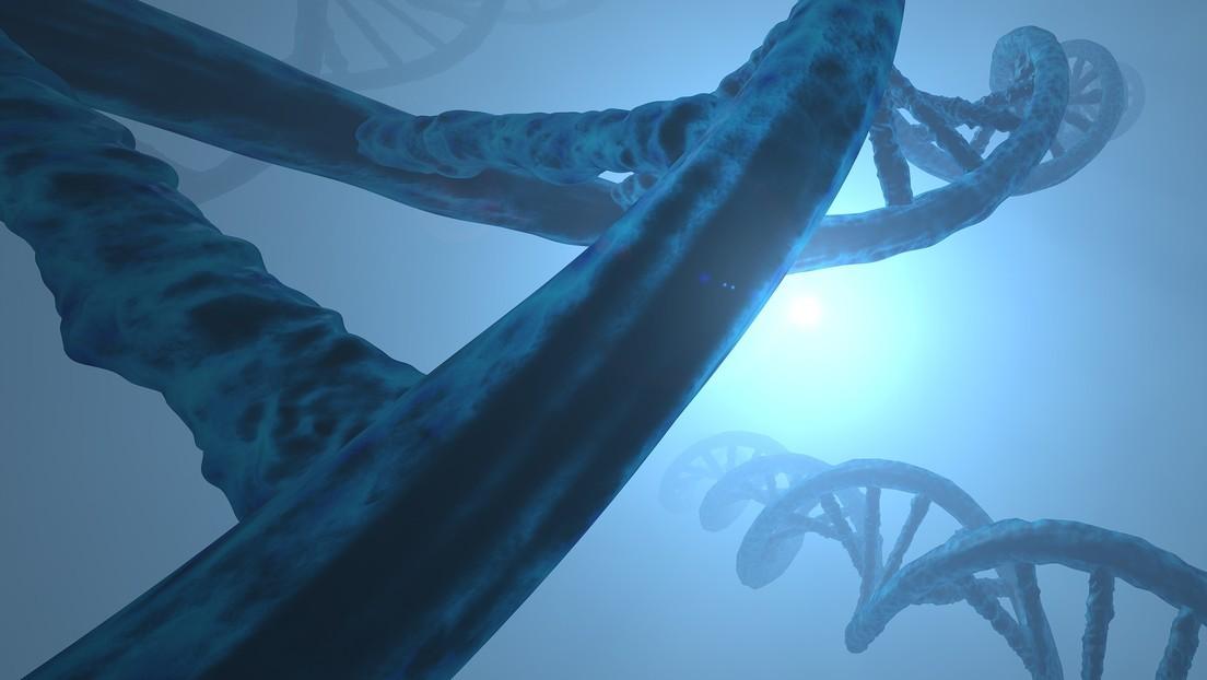 Descubren que el cromosoma Y está desapareciendo de la sangre de los hombres