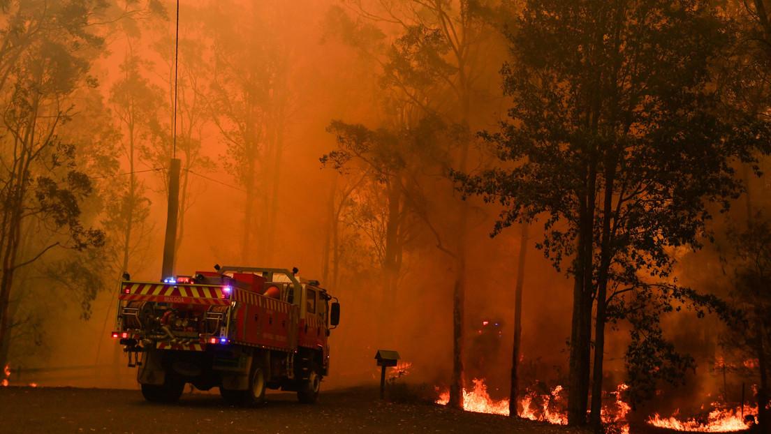 """Bomberos, sobre el incendio cerca de Sídney: """"Intentemos lo que intentemos, no está funcionando"""""""